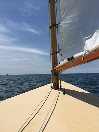 Chat With a Catboat
