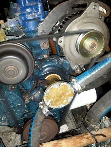 Servicing a Raw-Water Pump