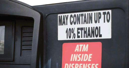 Living with Ethanol