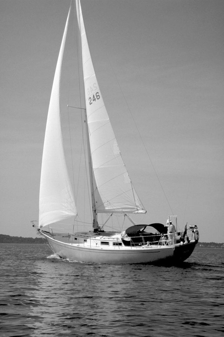 Ellis' Niagara sailboat