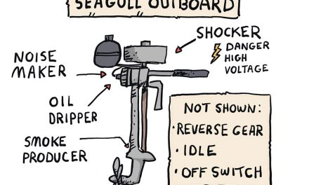 One Wing Flapping – Seagull Outboard