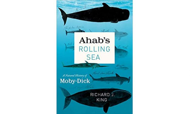 Book Review: Ahab's Rolling Sea