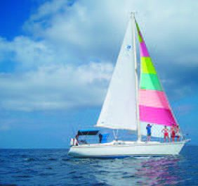 Pearson 36 Boat Review